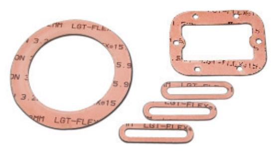 PTFE Modificado 15.900 LGT-FLEX